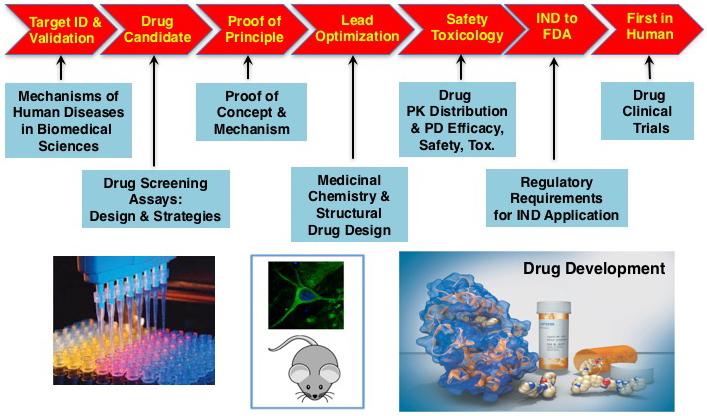 Pharmaceutical Sciences & Drug Development